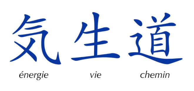 Qi Seï Do